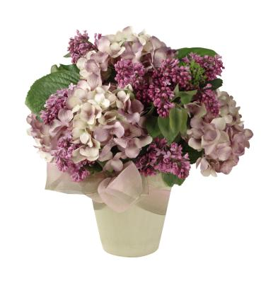 How to get potted hydrangeas to rebloom - Care potted hydrangea ...