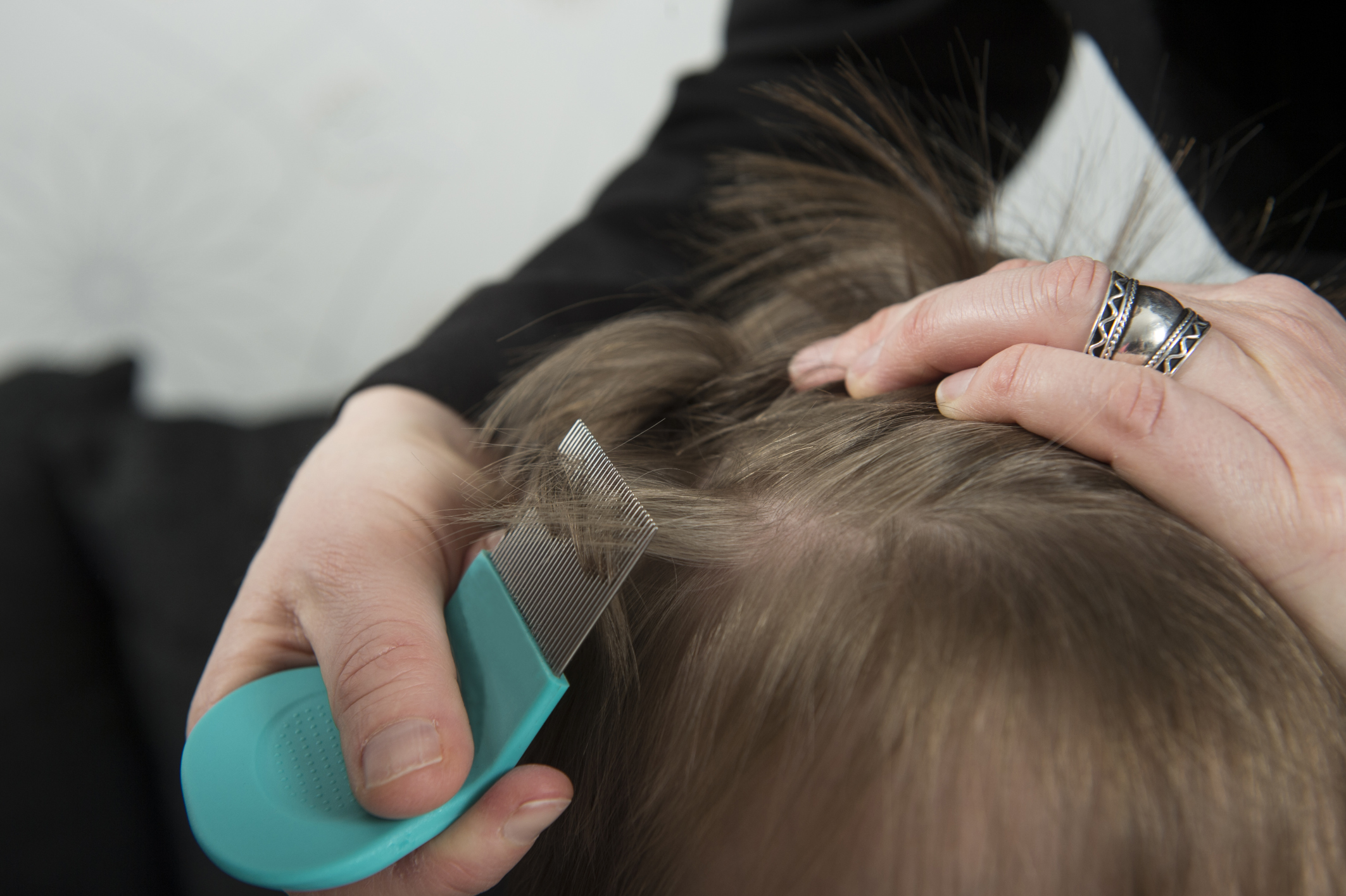 Barbicide & Head Lice