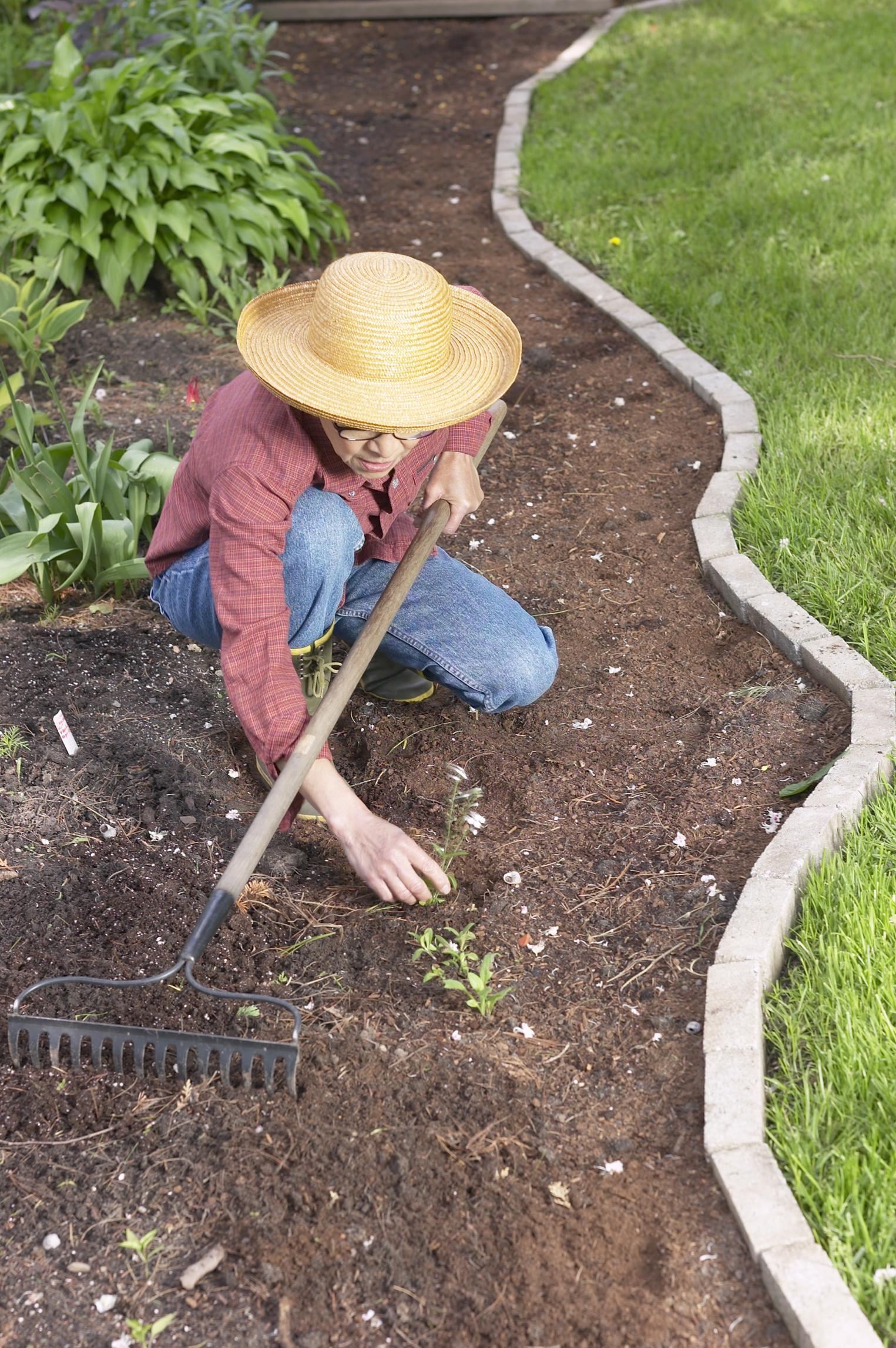 Stop weeds in flower beds - Stop Weeds In Flower Beds 53