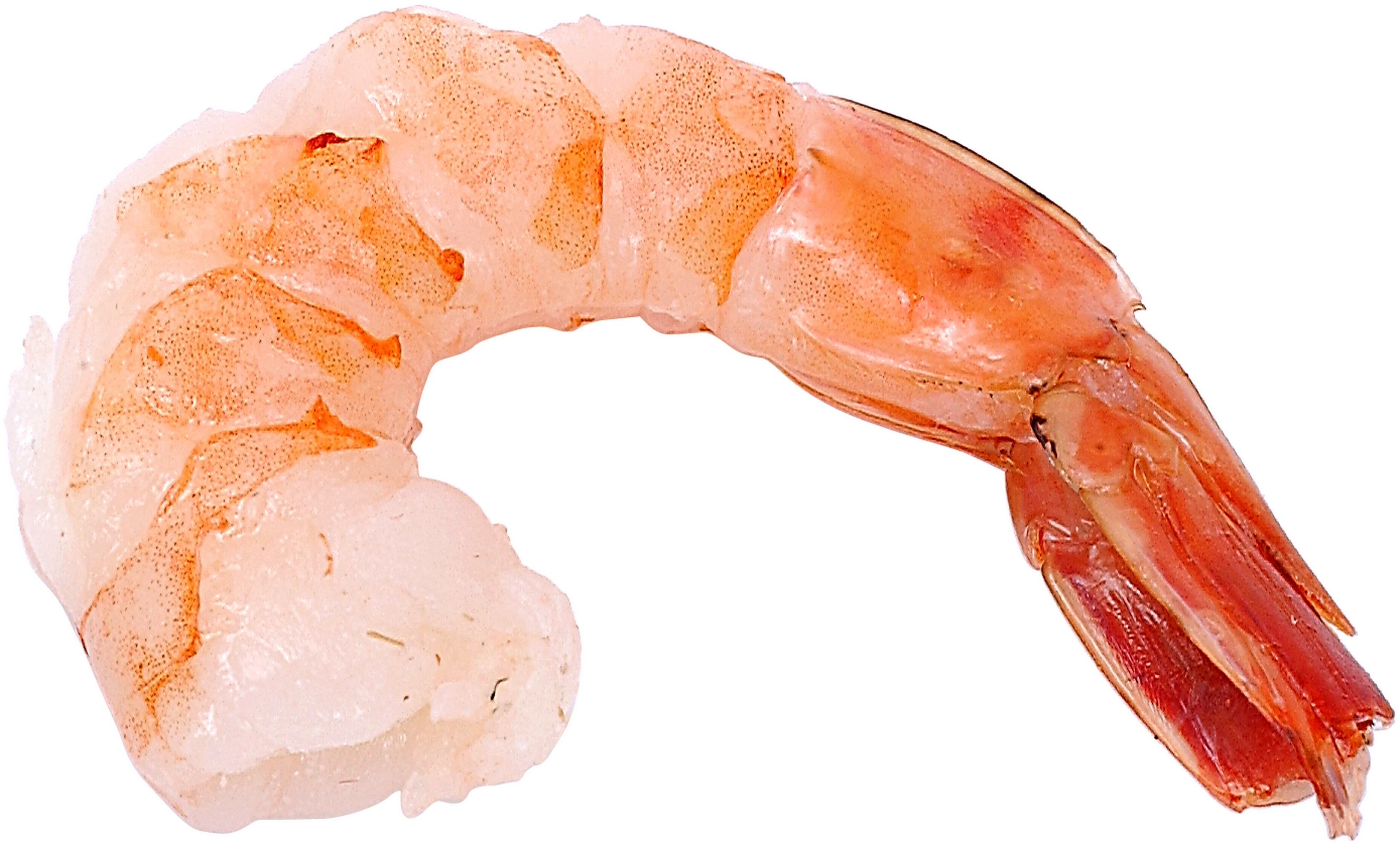 Restaurants With Garlic Shrimp in Ocala, Florida | USA Today