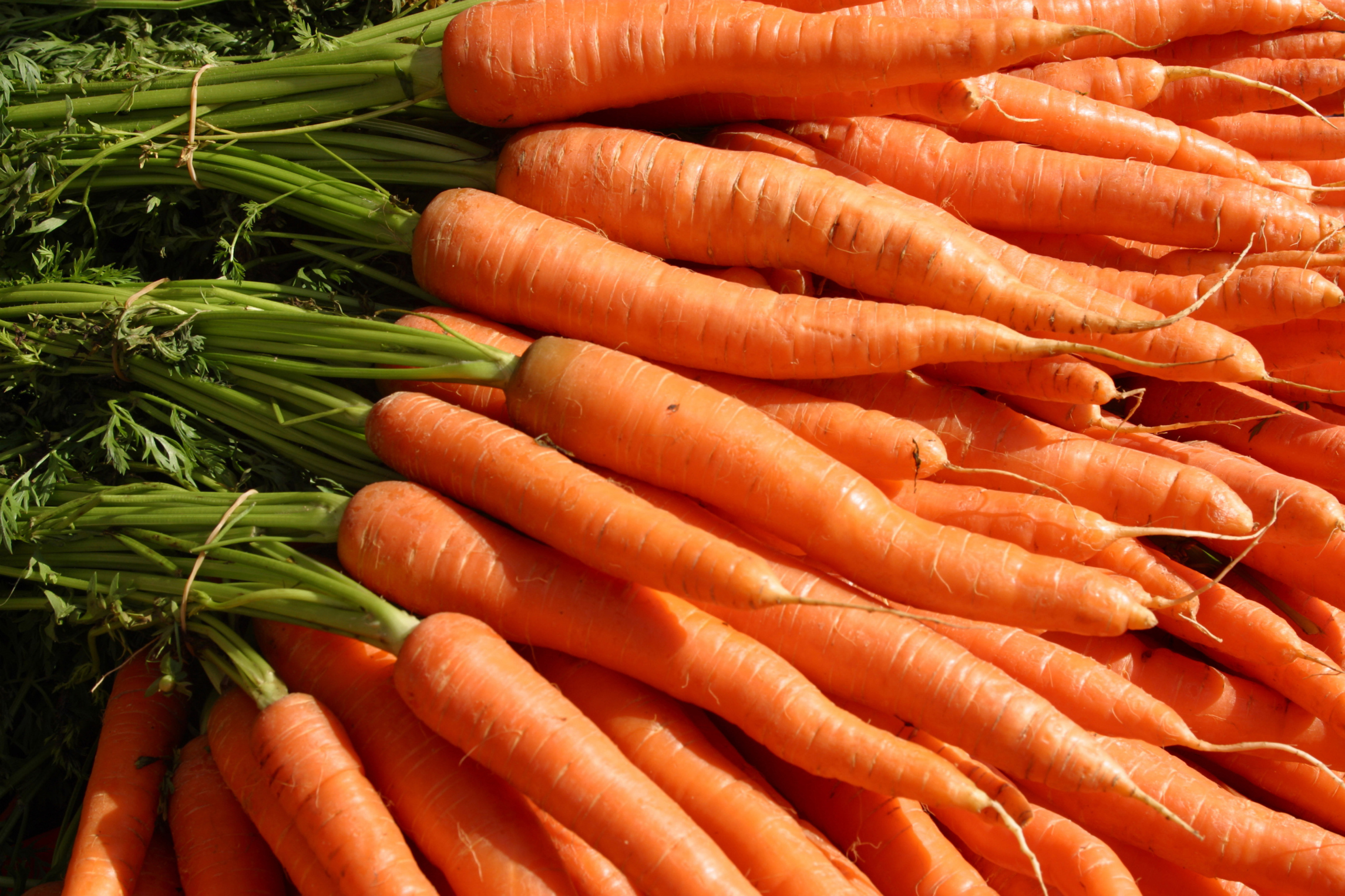 Vitamin A deficiency may decrease iron levels.