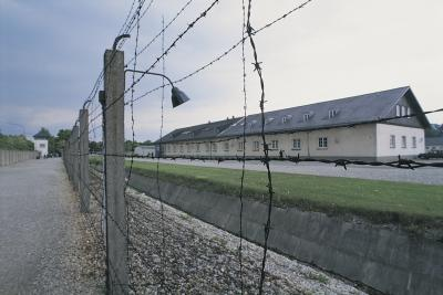 a glimpse at the holocaust essay This lesson offers topics essay on a glimpse at the holocaust — holocaust tags: essays research papers fc strong essays 1016 words (2 9 pages) the holocaust essay – the holocaust how to write a research paper on the holocaust holocaust research paper discusses the nazi agenda, auschwitz, the final solution and the jews.