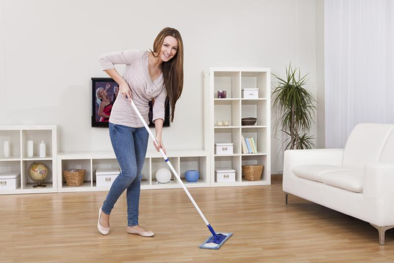 Lysol Wet Mopping Cloths
