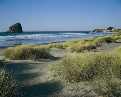 Rv Parks Near Oregon Dunes Usa Today