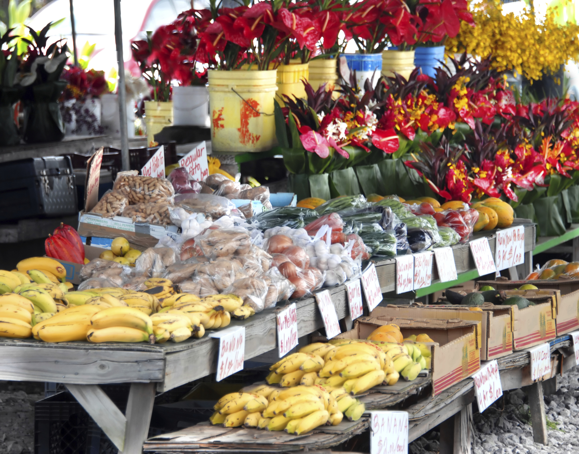 How to Start a Fruit & Vegetable Business | Bizfluent