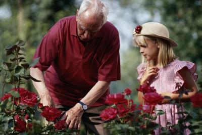 Rose Garden Nursing Rehabilitation Home Guides Sf Gate