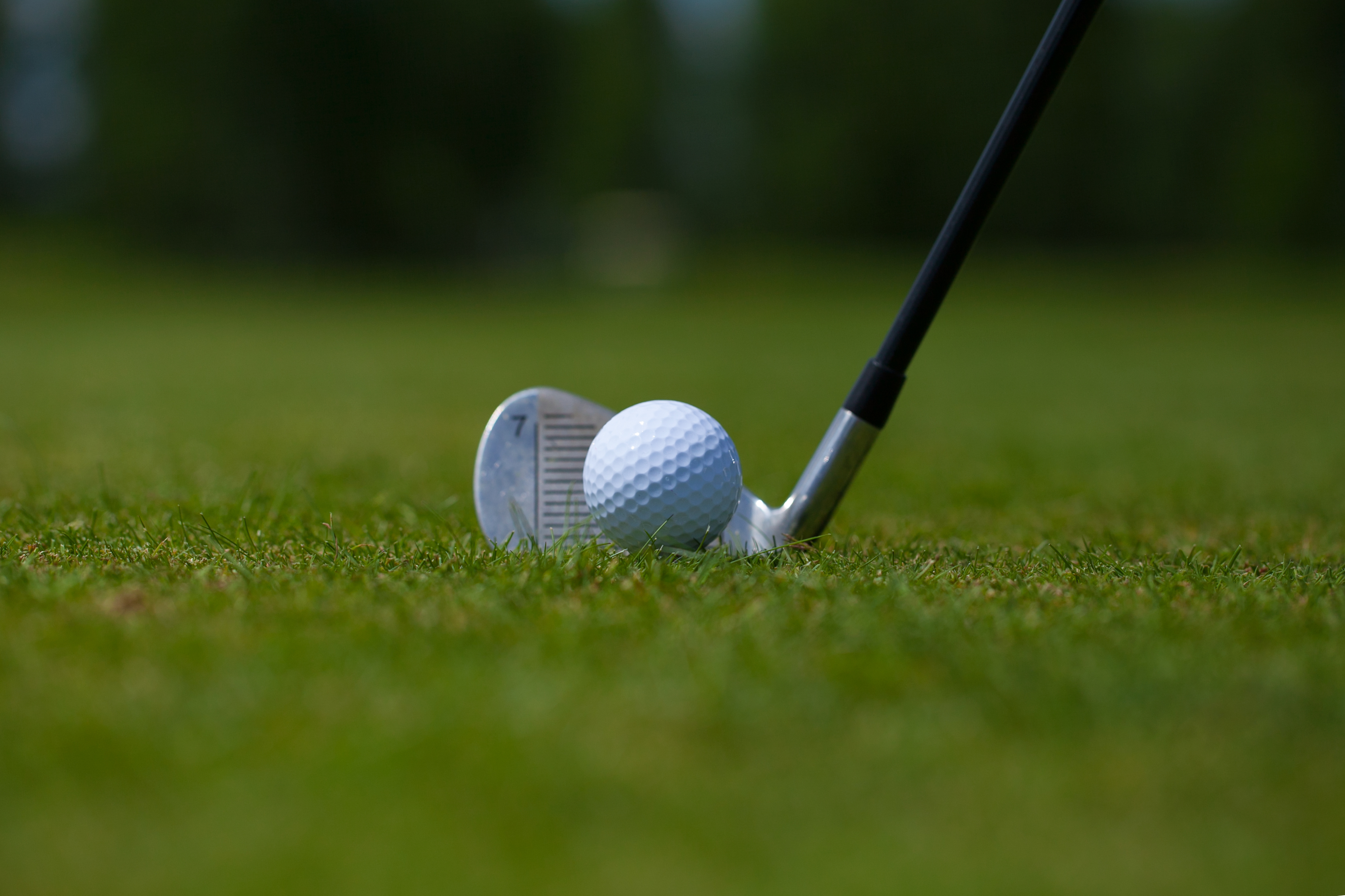 What Are the Differences Between the Titleist AP1 & AP2 Golf