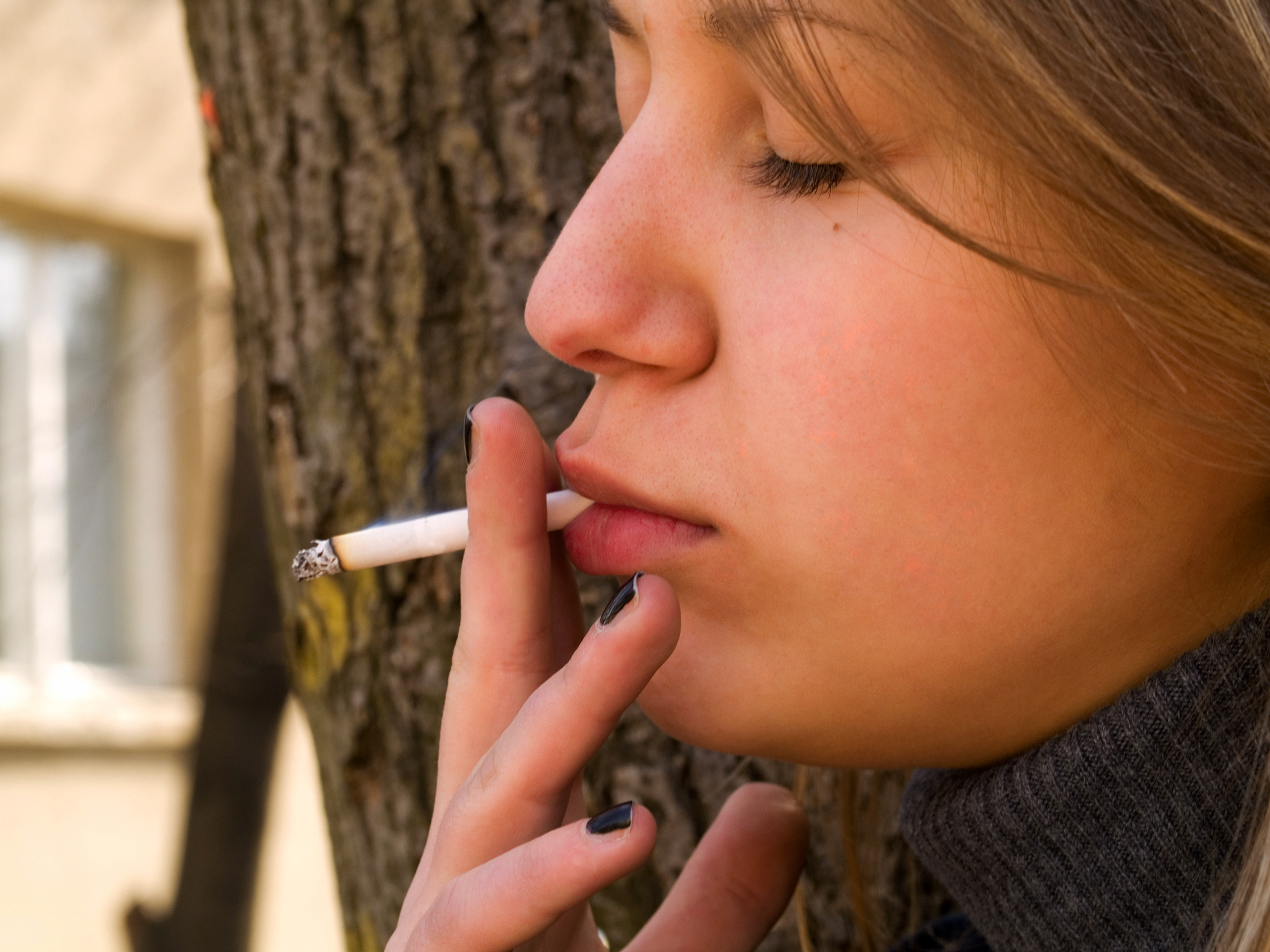 teenage smoking in canada essay Persuasive essay about smoking  smoking: teenage society smoking  student: tobacco and health canada quit smoking - 486 words.