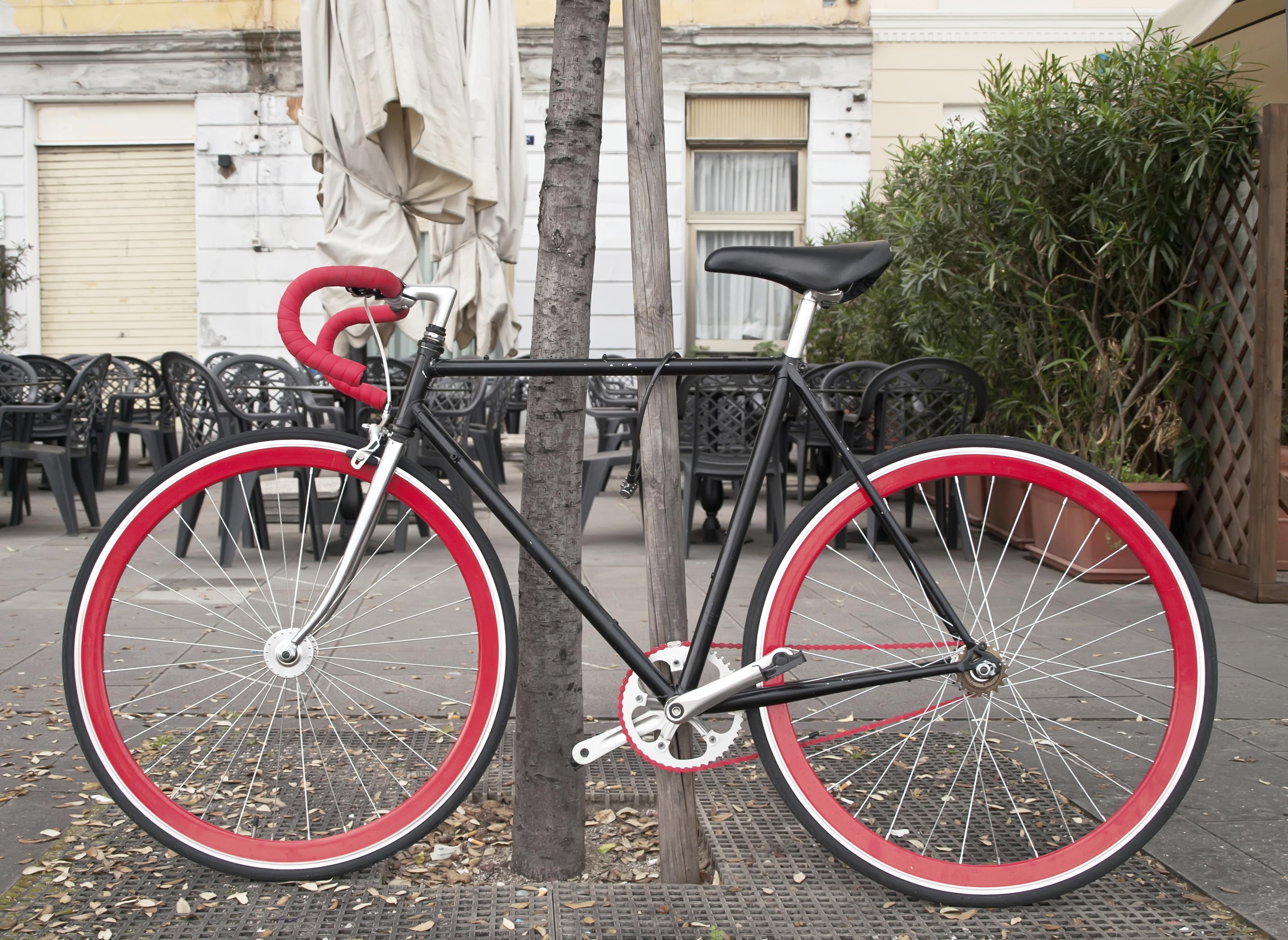 Trek Bike Frame Size