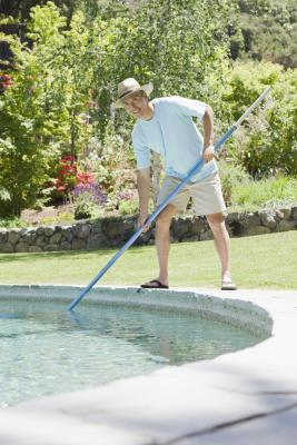 Bugs That Live In Swimming Pool Water Ehow Uk