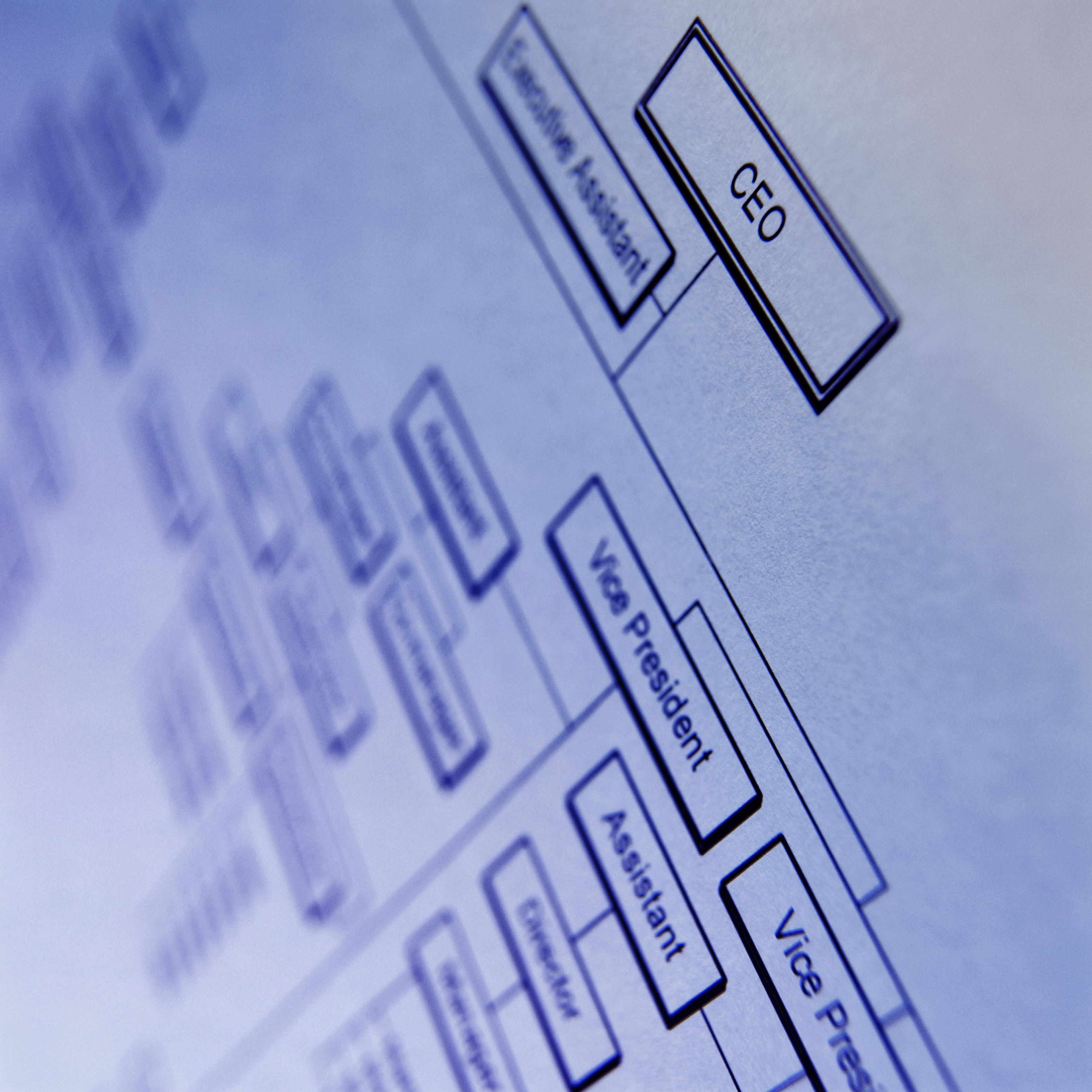 ms office organization chart template