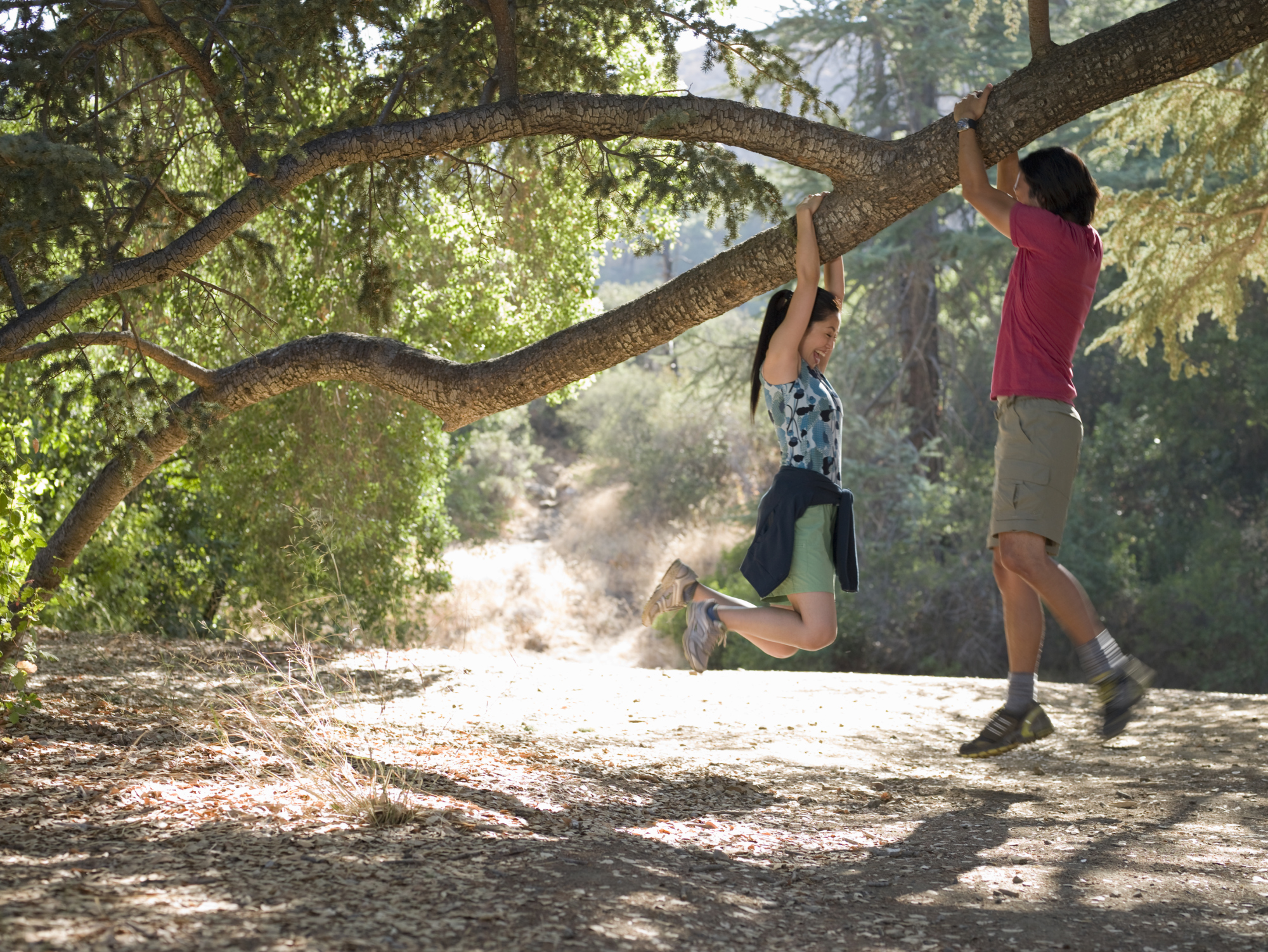 Responsibility for an Overhanging Tree | Home Guides | SF Gate