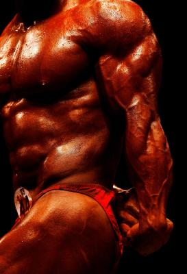 how to make your biceps bigger
