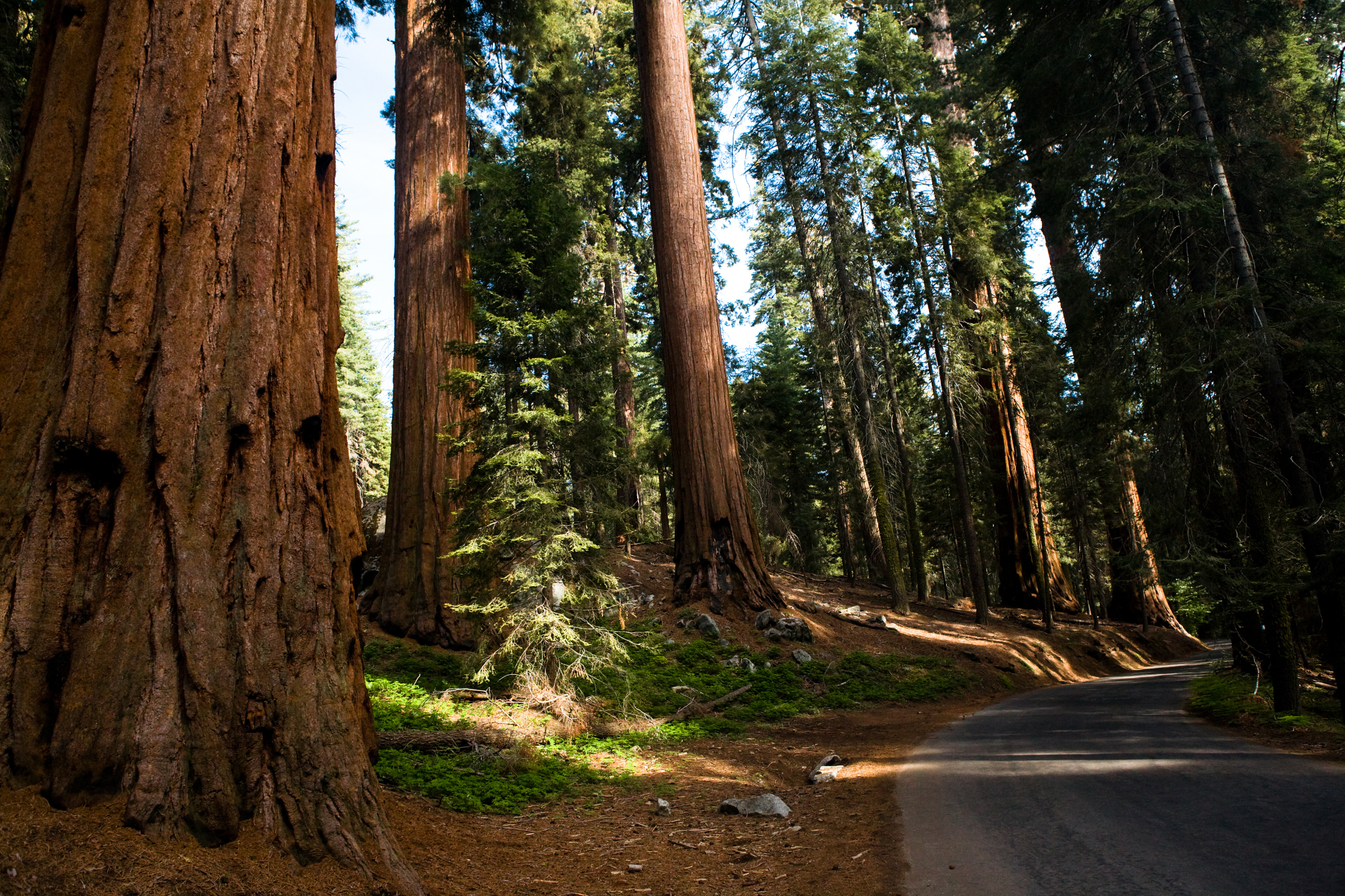 Places To Stay Between Los Angeles Amp Sequoia National Park
