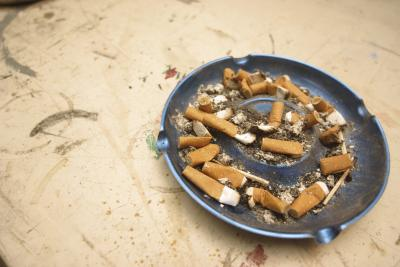 How To Use Tobacco Juice To Control Pest In The Garden