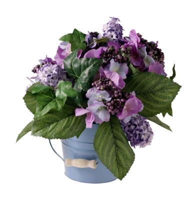 C mo hacer que las hortensias en maceta vuelvan a florecer ehow en espa ol - Como cuidar las hortensias en maceta ...