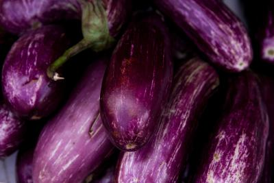How to cook an eggplant
