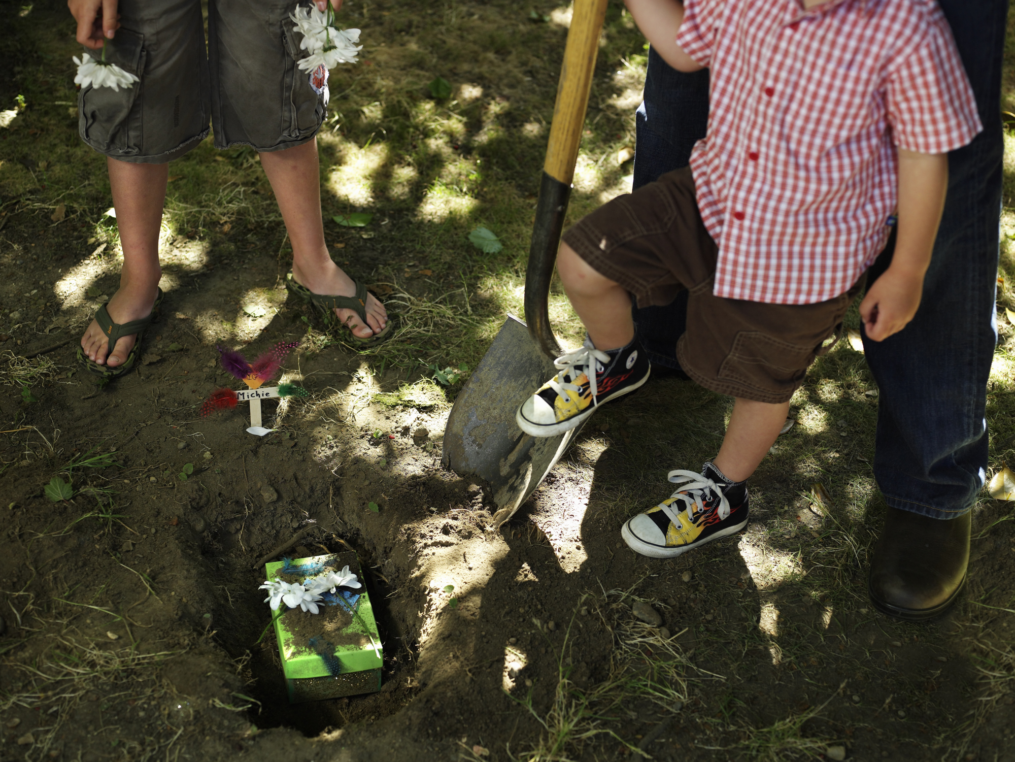 burying a pet in the backyard part 29 image titled bury a
