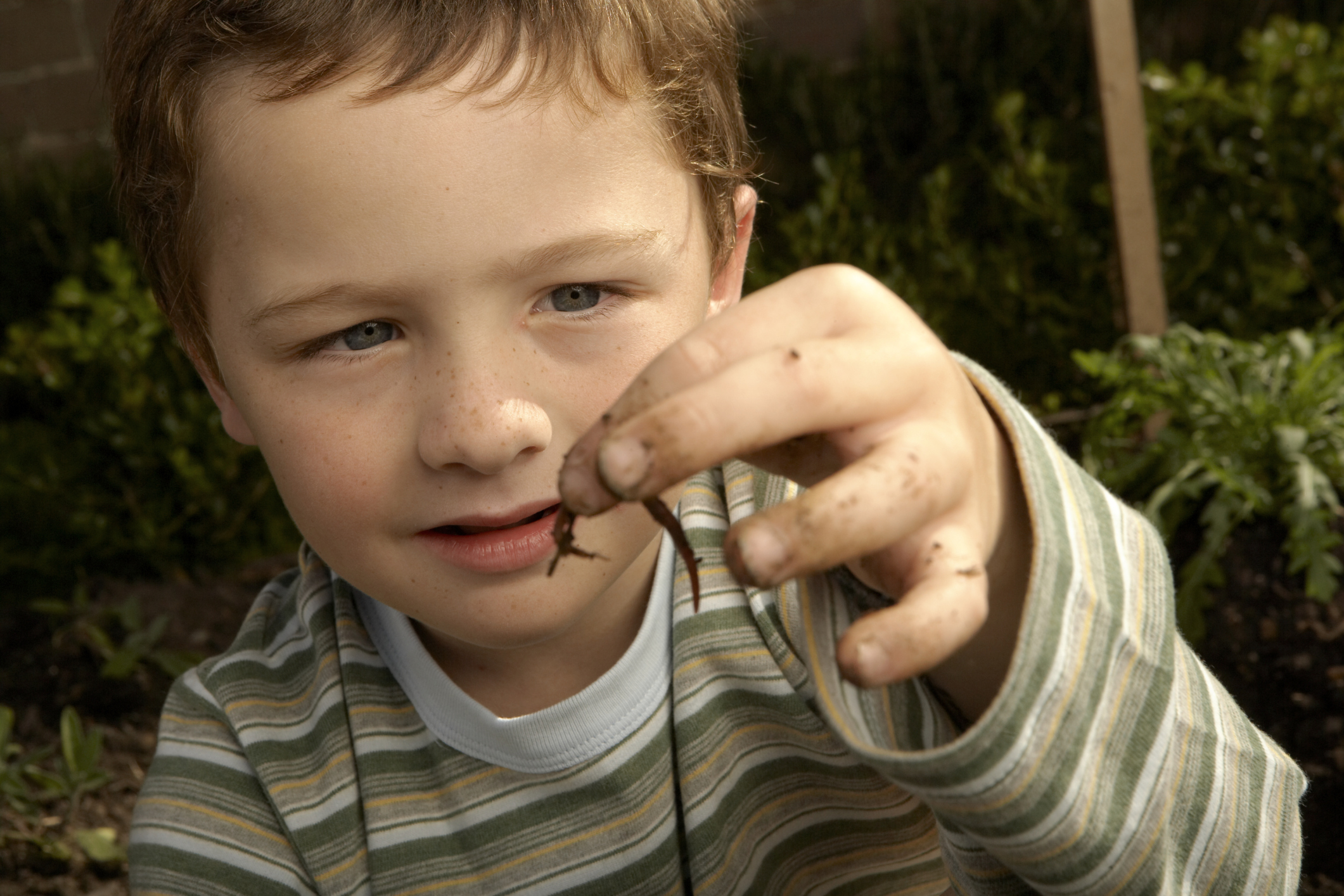 Insidious worms: symptoms in a child and an adult