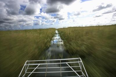 Airboat Tours In Everglades City Florida Usa Today