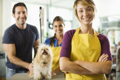 Dog Kennel Owner Salary