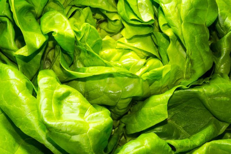 Olive Garden Salad Nutrition Facts LIVESTRONGCOM