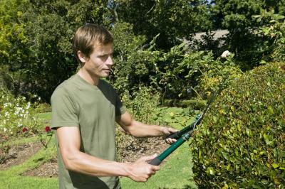 Horticulturist Duties Chron Com