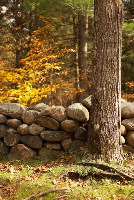 C mo construir jardineras con piedras aut ctonas ehow en for Jardineras de piedra natural