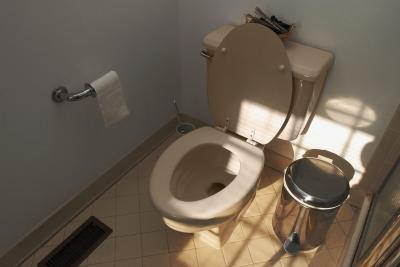 A high pitched noise when the toilet fills back up with for Bathroom smells bad