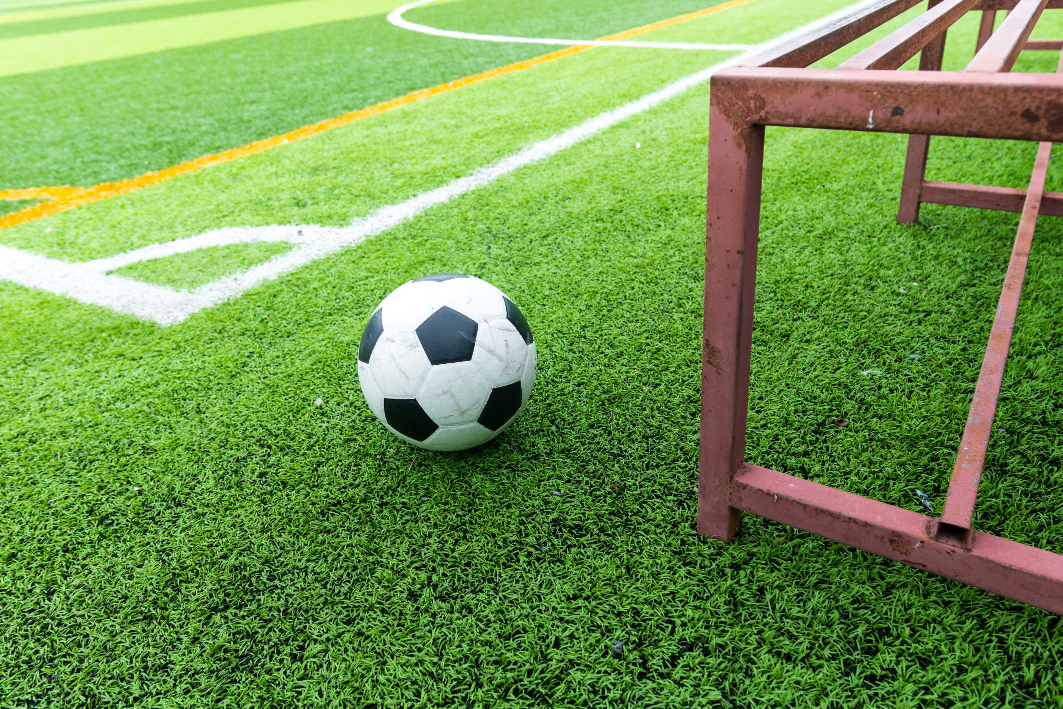 Artificial turf pros and cons - Artificial Turf Pros And Cons 20