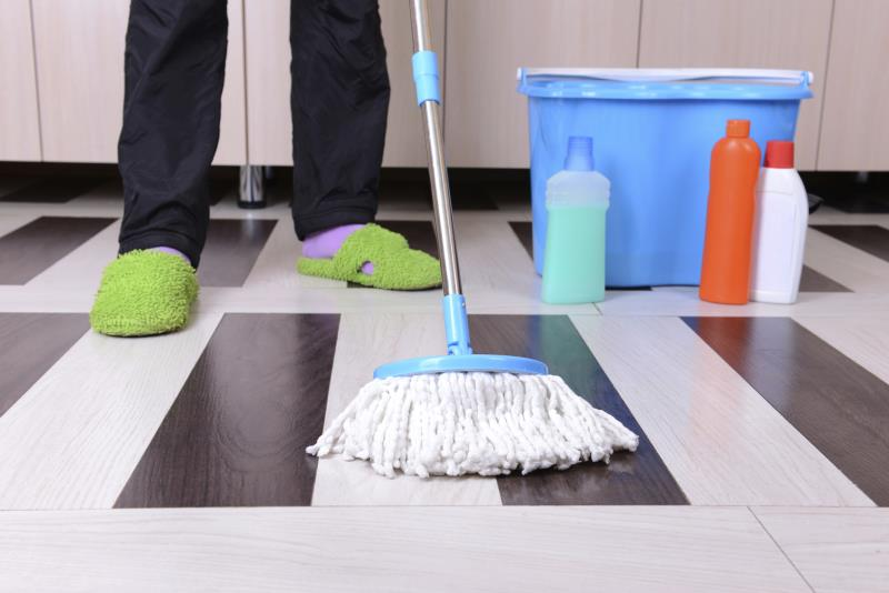 How To Kill Germs On Vinyl Floor With Ammonia Home