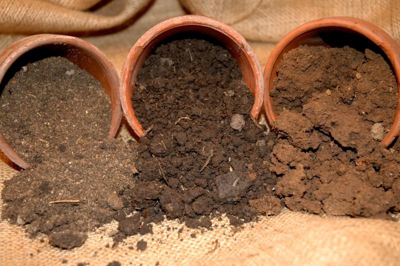 sandy soil Gallery