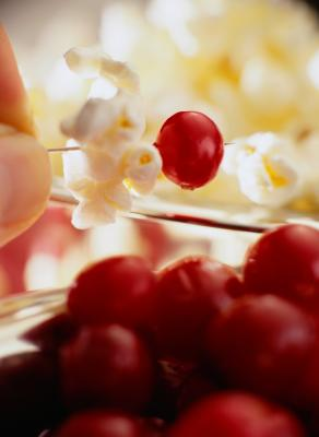 How to decorate for christmas with popcorn cranberries for Artificial cranberries decoration