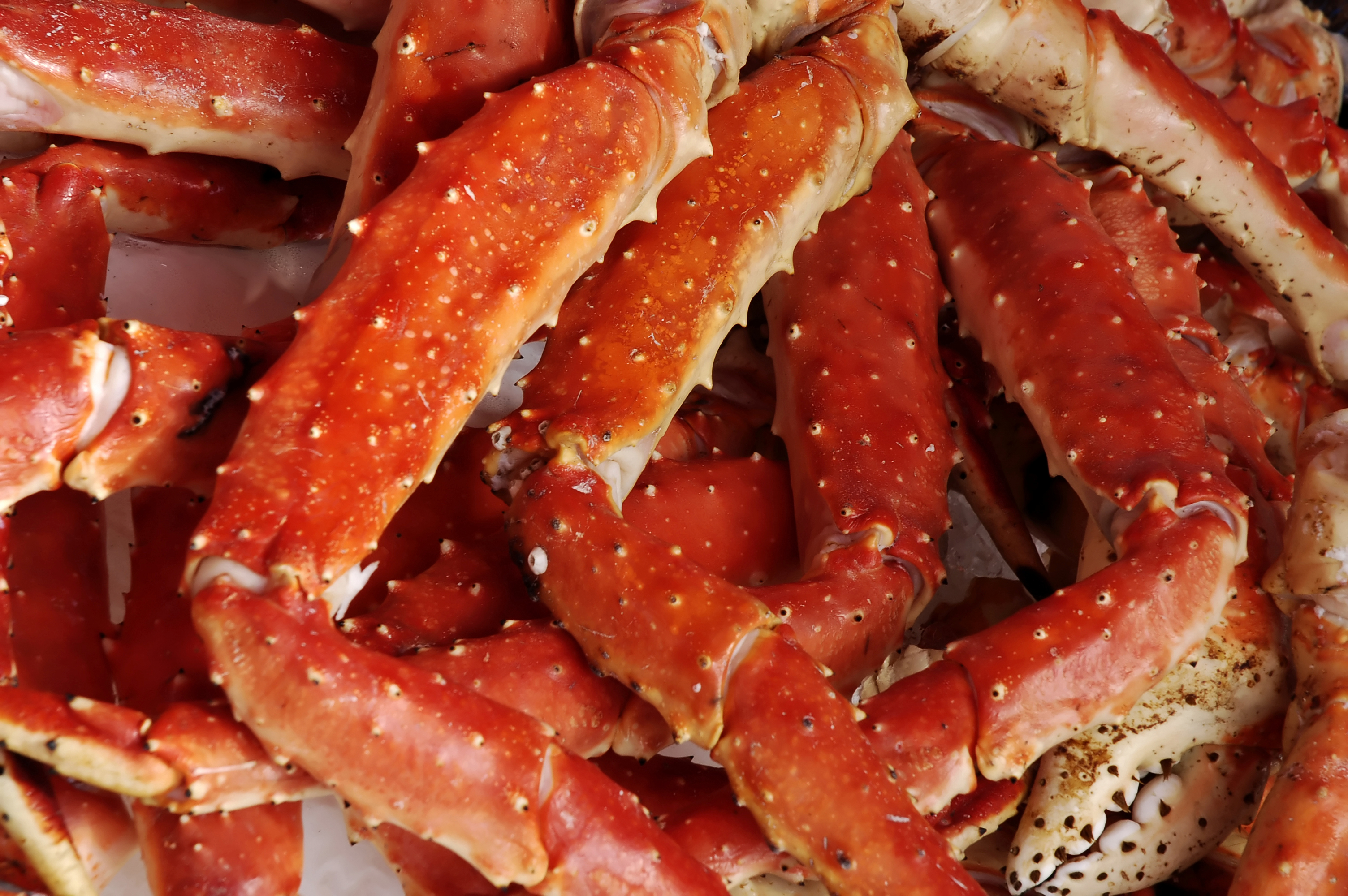 How To Cook Frozen Crab Legs On The Stove Without Thawing Livestrong