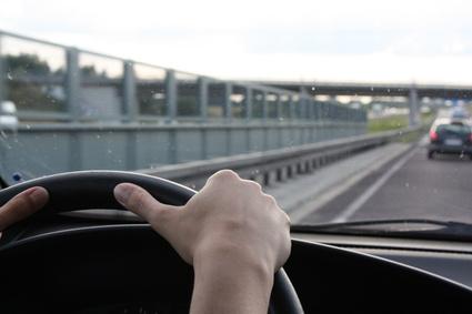 interim driver license rent car