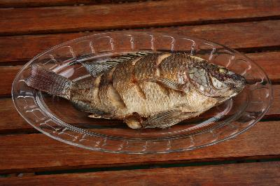 What Is in a Serving of Tilapia