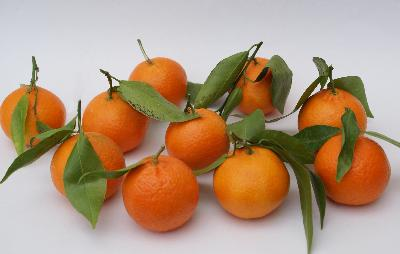 Negative Calories In Tangerines
