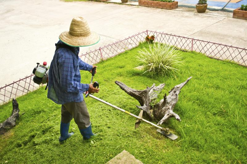 Gas Weed Eater Adjustments   Home Guides   SF Gate