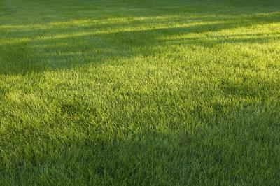 Shifting Trouble With My Hydrostatic Lawn Tractor | Home Guides | SF