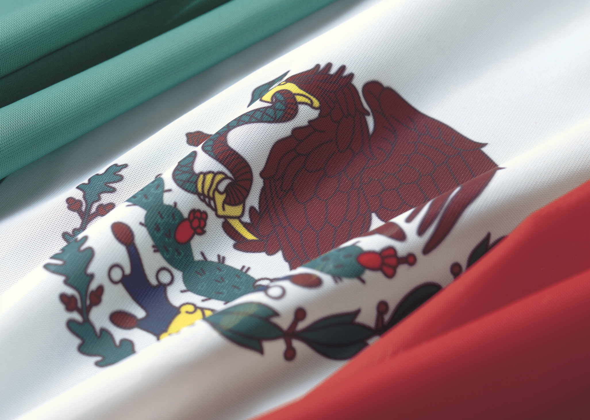 How to Get a Mexican Passport Application Online | USA Today