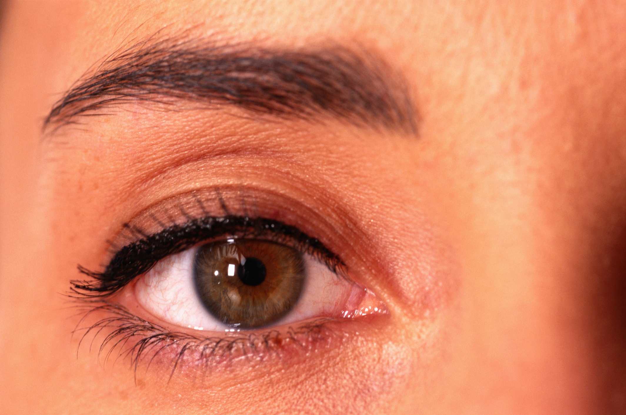 Creams For Eyelash Growth Our Everyday Life