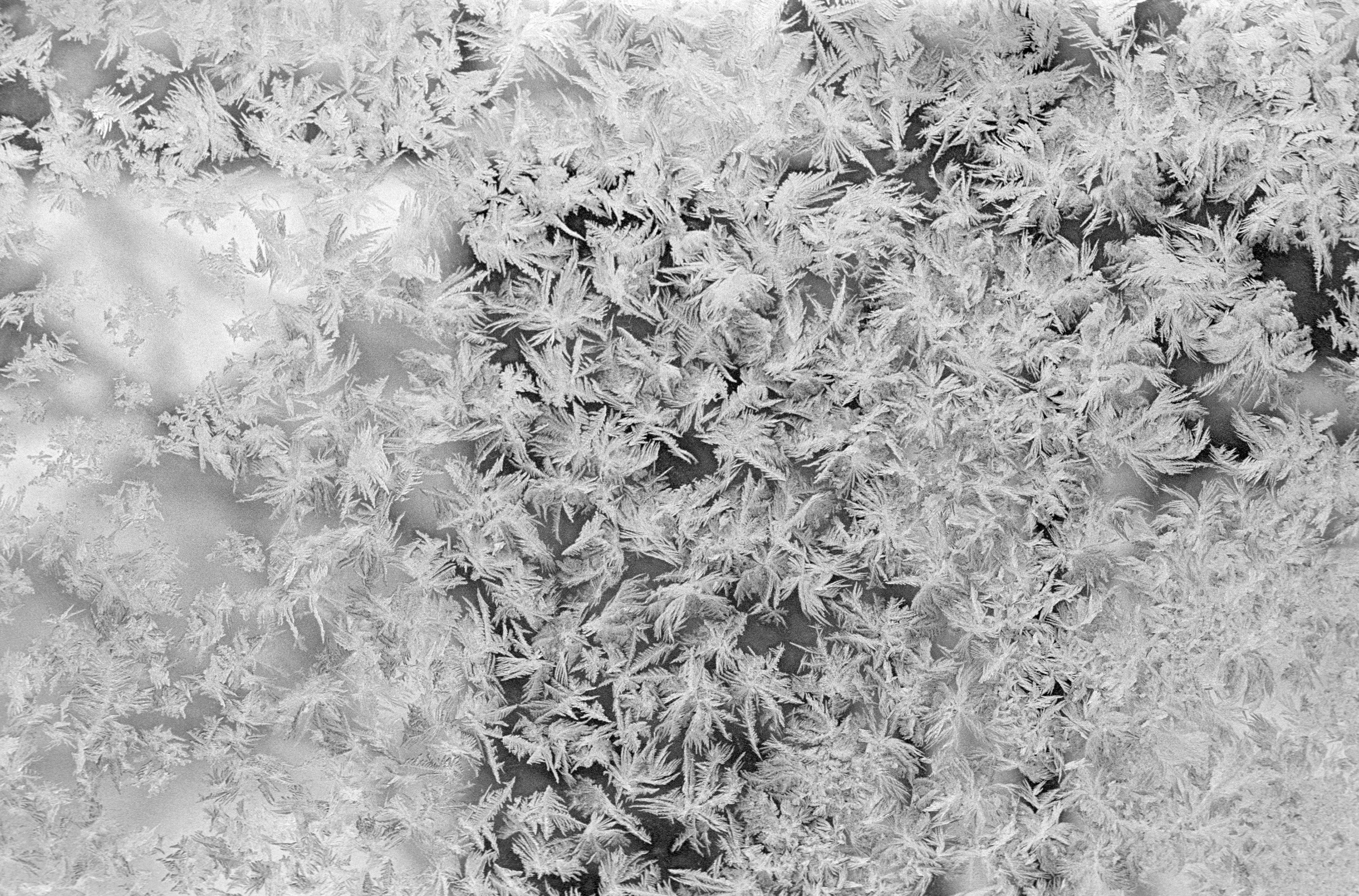 List Five Kinds of Snow Crystals
