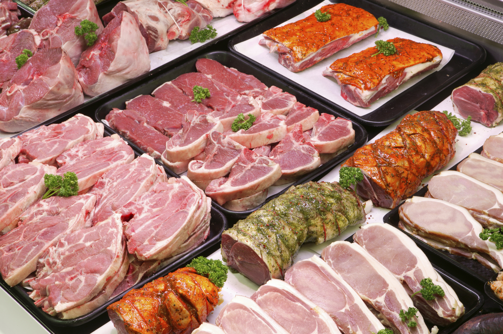 meat shop business plan pdf