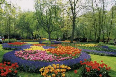 How To Plant A Circle Flower Bed