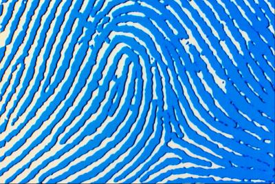 How to Activate the Biometric Fingerprint for My HP Laptop
