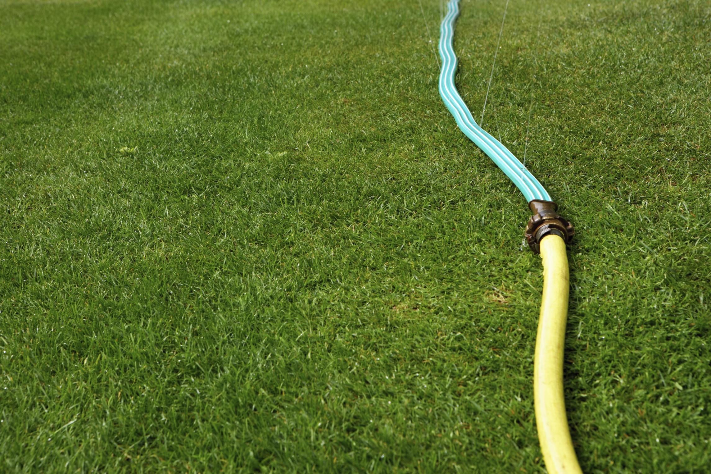 How Far Does an Ortho Tree Sprayer Spray?   Garden Guides