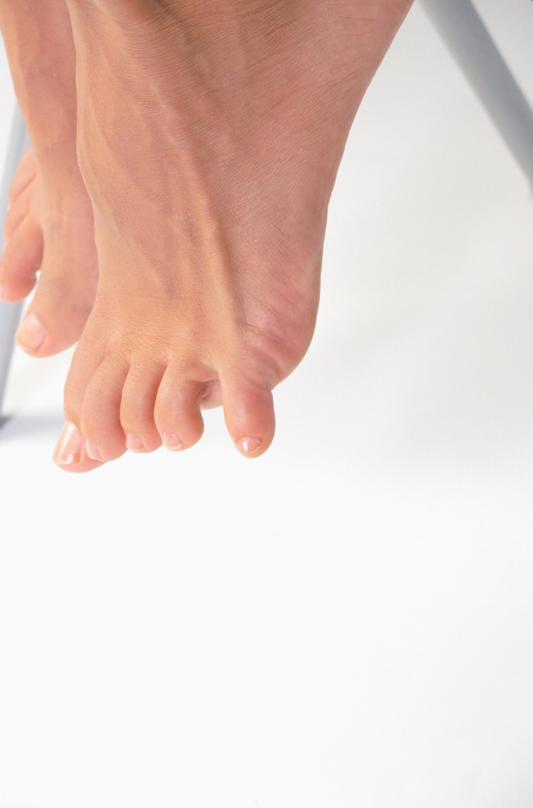 Cuáles son las funciones de los ligamentos, tendones y cartílagos ...