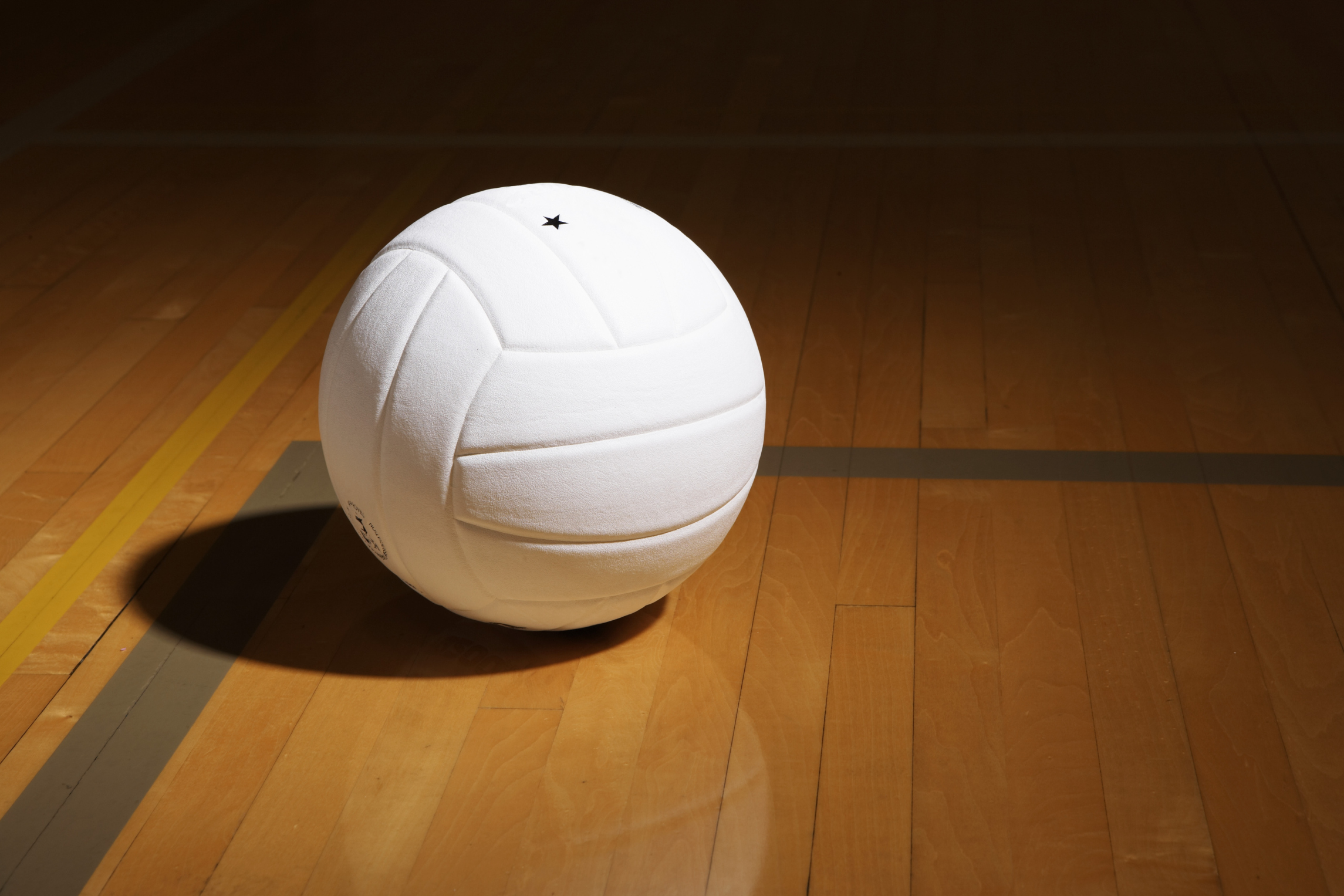 Image result for INDOOR VOLLEYBALL BALL