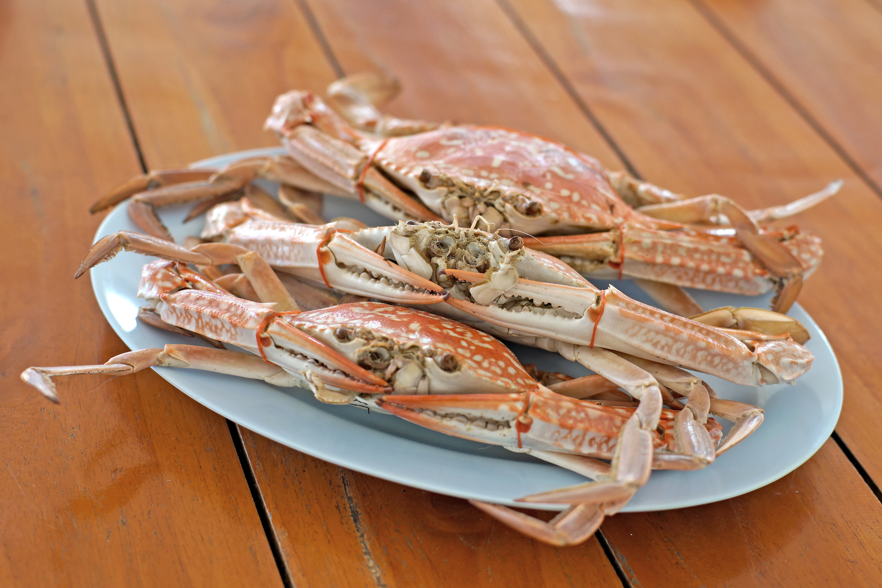 The Nutrition in Steamed Crabs