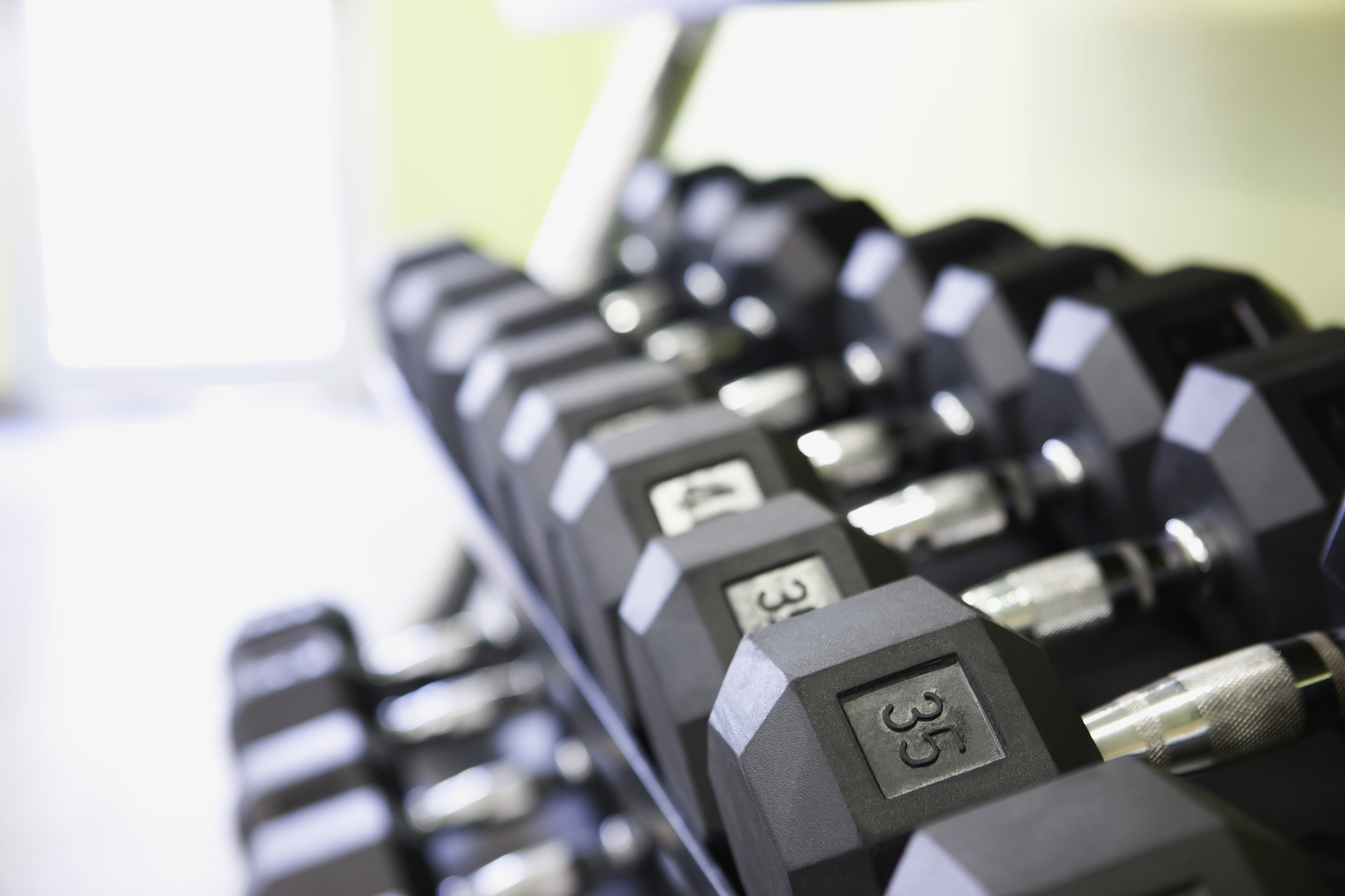 what are dumbbells made out of sportsrec